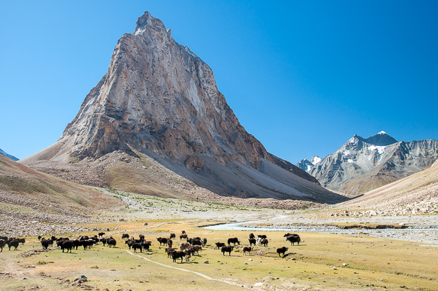 Indien – Ladakh, Himachal Pradesh, Zanskar 2018